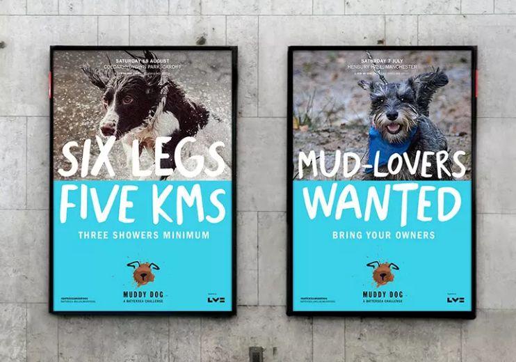 博文配图(muddy dog)