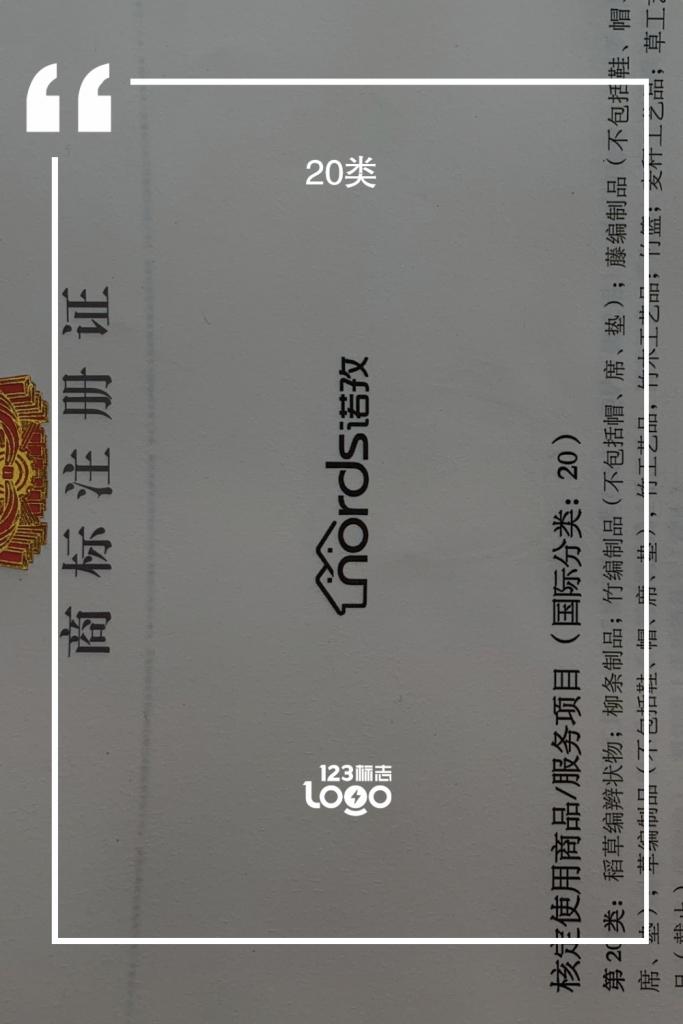 诺孜-20类