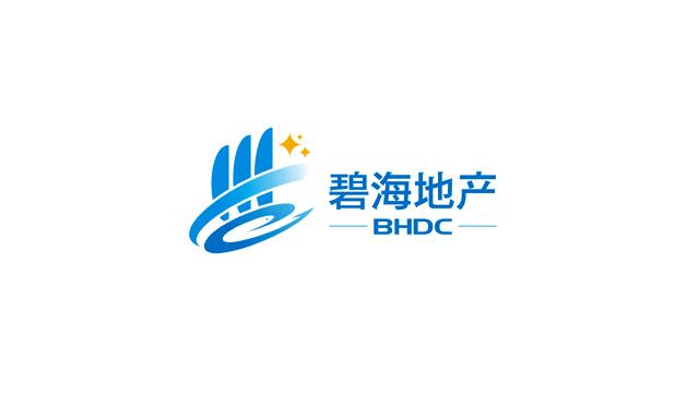 天津市碧海新航投资有限公司标志设计欣赏