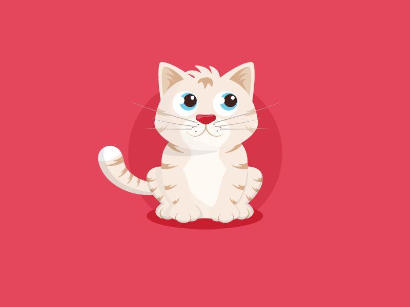 壁纸 动物 猫 猫咪 小猫 桌面 800_600
