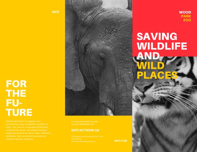 平面设计小技巧分享之如何设计一款优秀的宣传册51