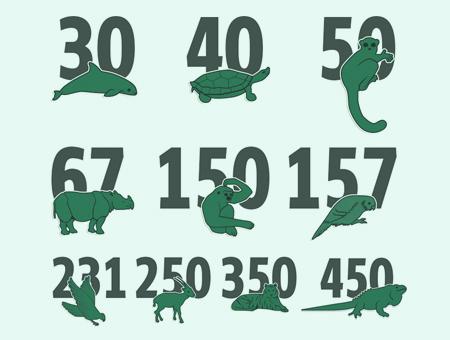 LACOSTE鳄鱼logo变身10个濒危动物,看看你认识几个?